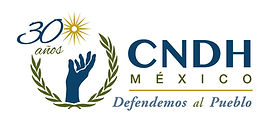 Logo_CNDH_30_color.jpg