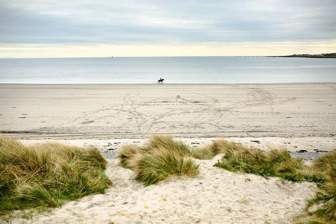 Beach lovers?
