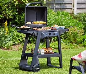 BBQ in garden.jpg