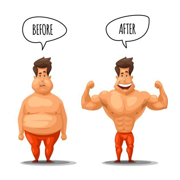 perte de gras, masse musculaire