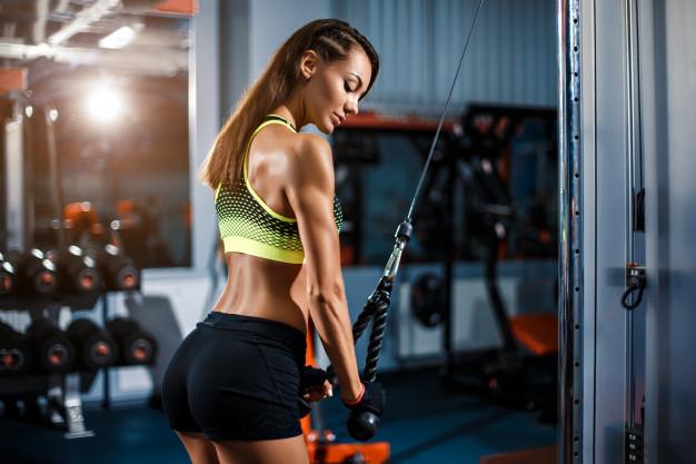 triceps, perte gras