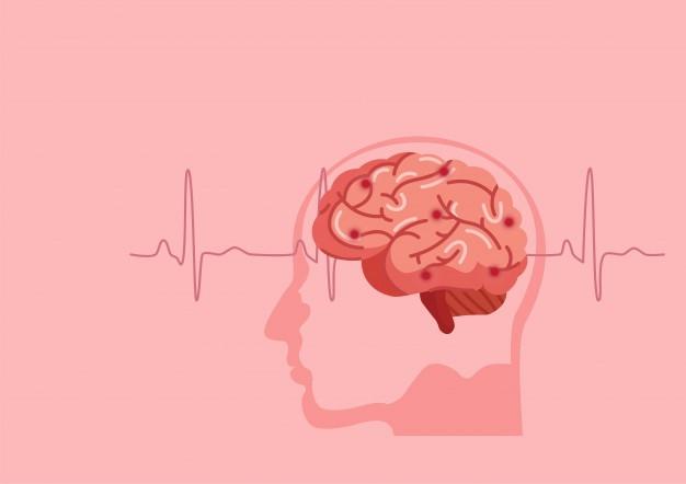 cellules cerveau, carburant