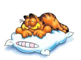 sommeil, perte de poids
