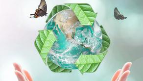 Study Conservation & Ecosystem Management / Land Management