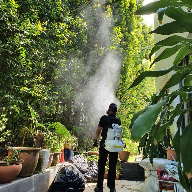 Singapore Mosquito Control
