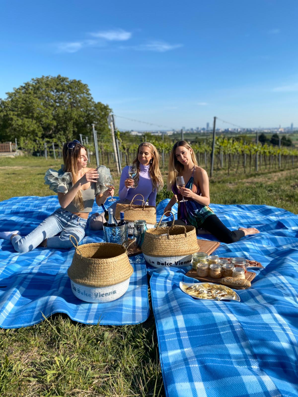 Wein Picknick