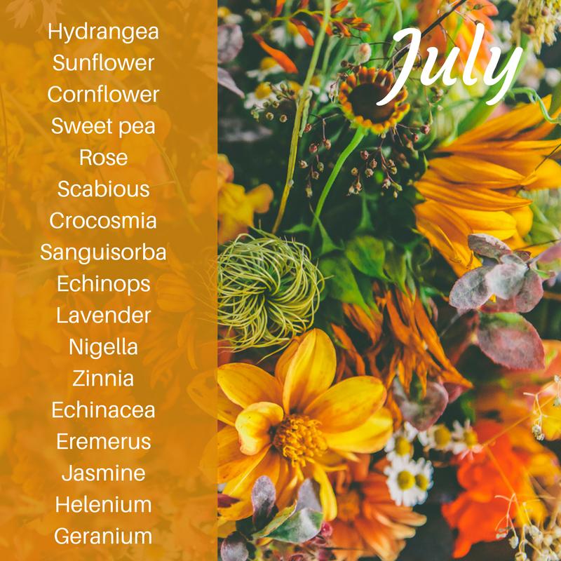 Some of July's seasonal flowers
