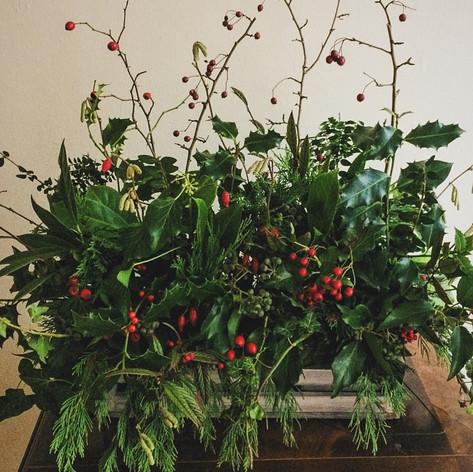 Christmas Arrangement, Stem Ginger