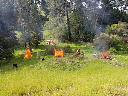 fire crew.jpg