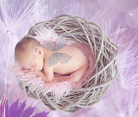 naissance, prénétal, périnatal