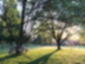 LIT photo bikes.jpg