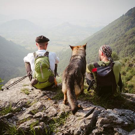Wilderness First Aid(WFA)