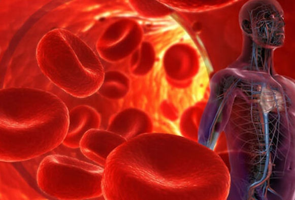 bloodborne_pathogens_osha_regulations_co