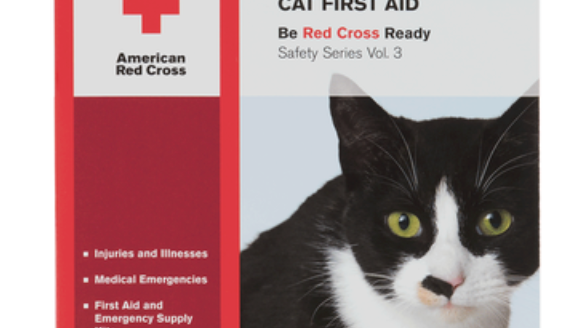 Cat First Aid Book/DVD