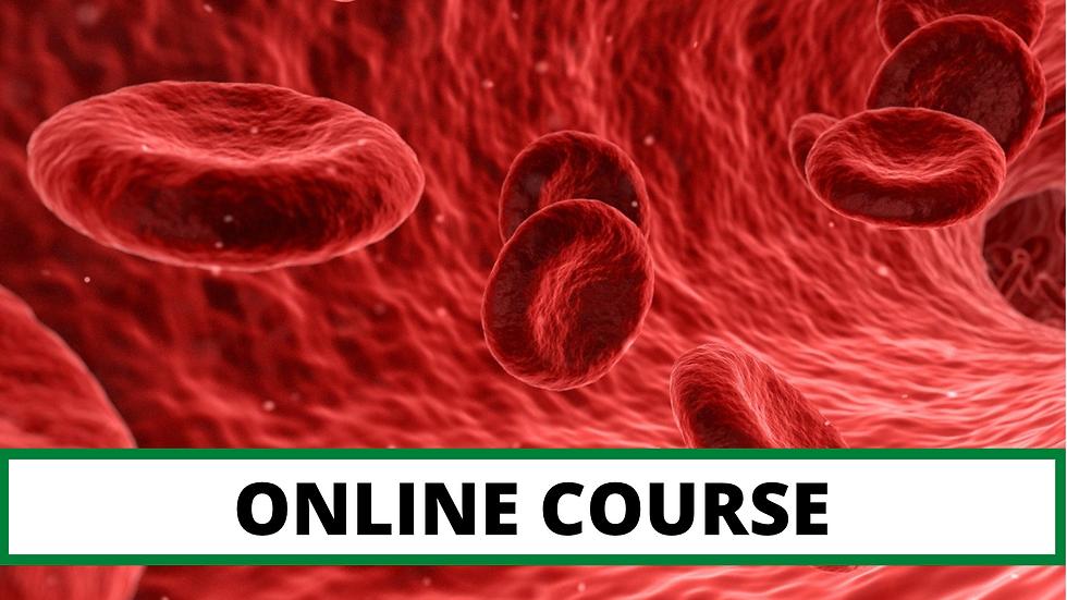 Universal Bloodborne Pathogens