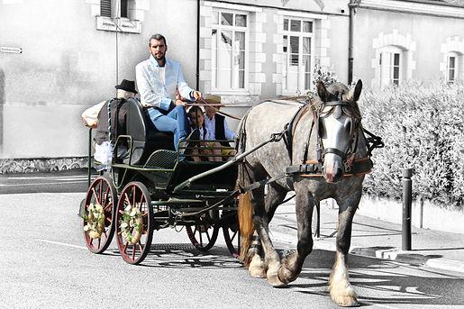 mariage cheval calèche