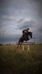 cheval alezan CSO nature