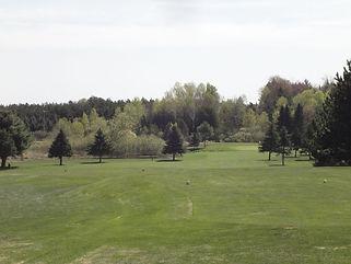 PinesAtFairviewHole4.jpg