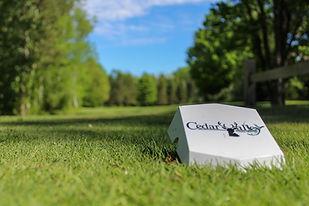Cedar Valley Golf Club.jpg