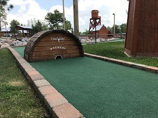 Wild Frontier Fun Park Comins Michigan