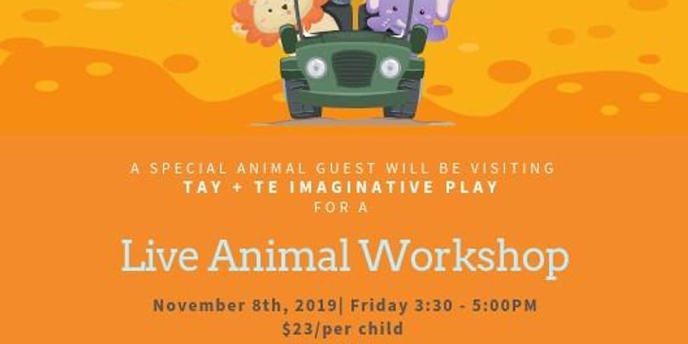 Live Animal Workshop ( Friday, Nov 8th)