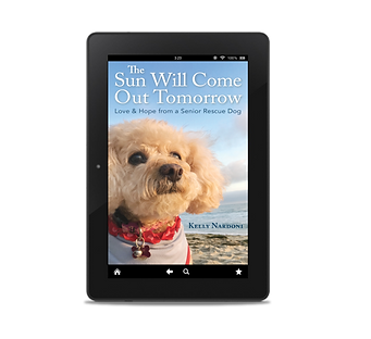 E-book: The Sun Will Come Out Tomorrow: Love & Hope from a Senior Rescue Dog