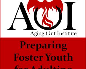 AOI Podcast Feature