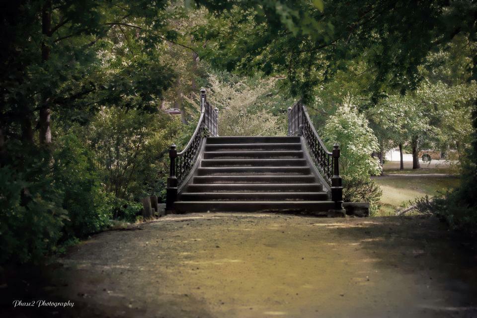 Bridge to...