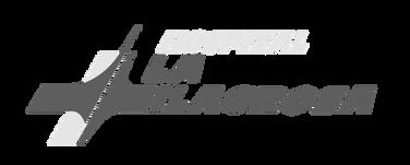 logo-hospital-min_edited.png