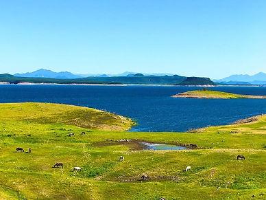 lake-hidalgo-view.jpg