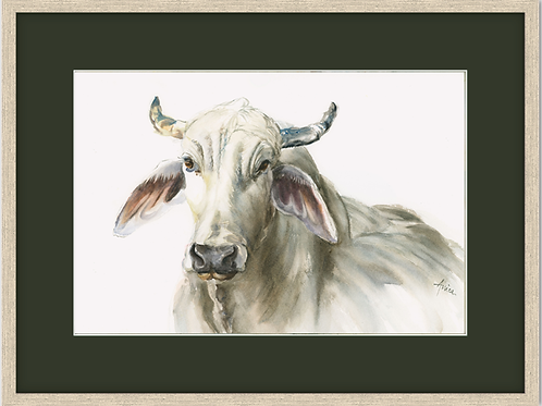 Mr Brahman (Framed)
