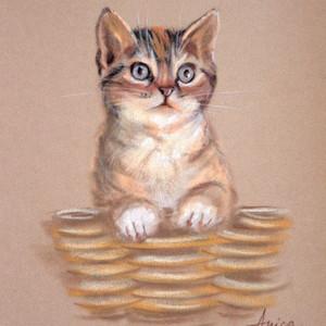Pus in Basket