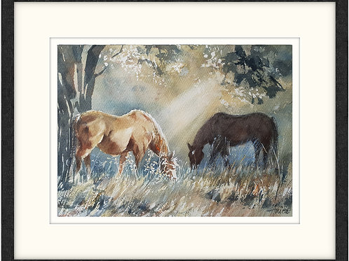 Golden Grazing (Framed)