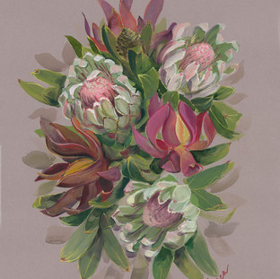 Proteas Bouquet