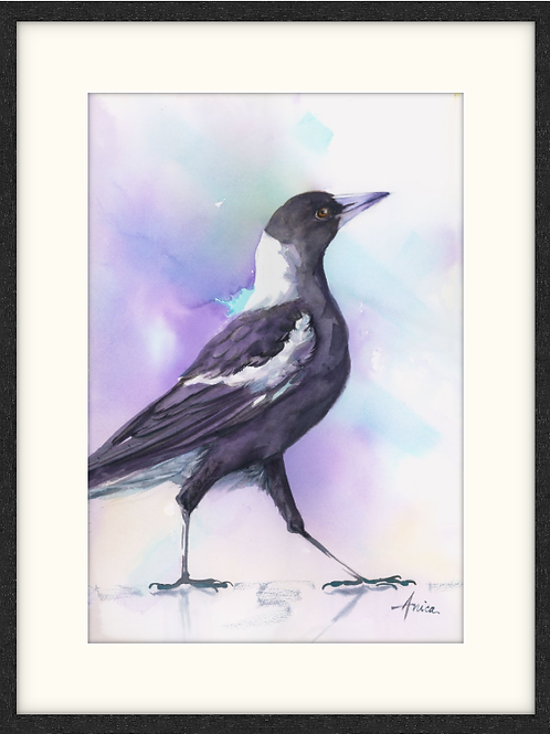 Magpie on the Catwalk (Framed)