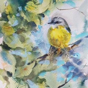Eastern-Yellow-Robin