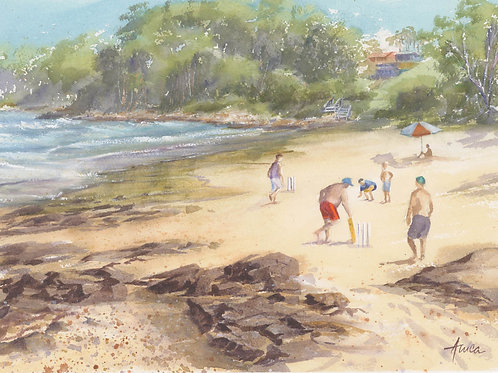 Cricket at Narrawallee Beach