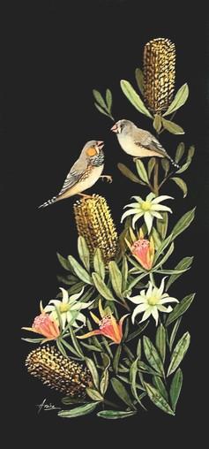 Zebra Finches in Wildflowers
