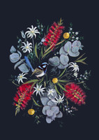 Superb Wren in Wildflowers