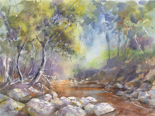 Currawon Creek