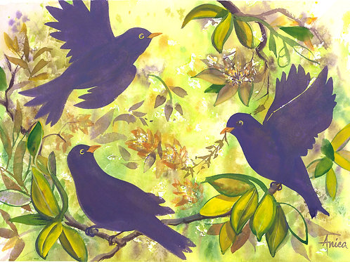 Blackbird Trio