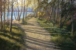 Narrawallee Inlet, Bush Track