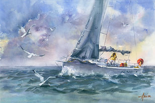 Sailing-the-Seas