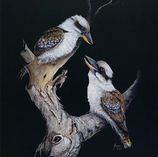 Kookaburra Duo.jpg
