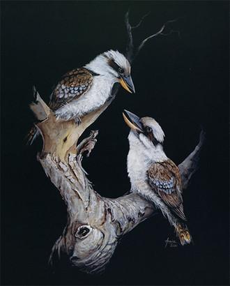 Kookaburra Duo