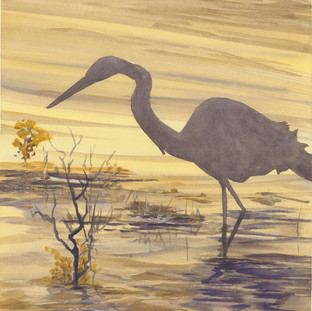 Egret at sunrise