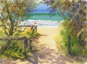 Sunny-path-to-Mollymook-Beach+.jpg