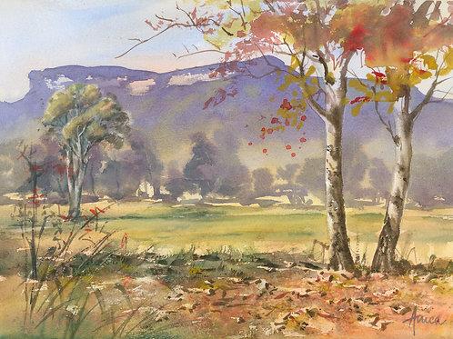 Autumn in the Kangaroo Valley