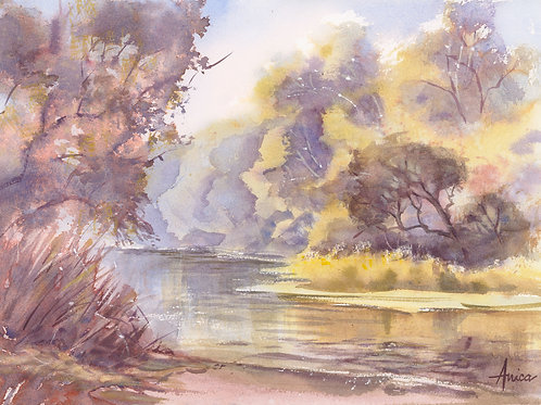 On the Lachlan River