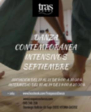 DANZA_CONTEMPORÁNEAINICIACIÓN_PARA_ADULT